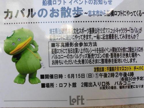 20140618デ 146.JPG